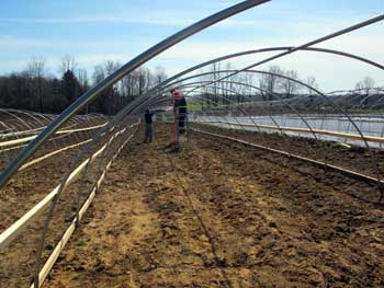Putting the top purlin on a new high-tunnel