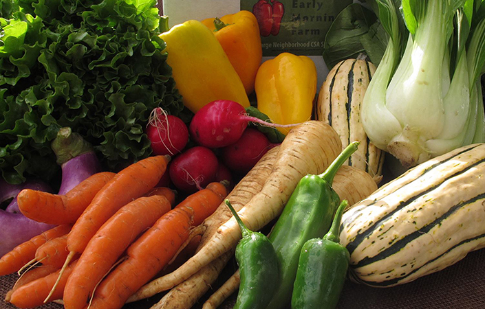 Paleo and Our CSA