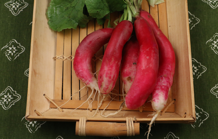 Pickled Radishes by Early Morning Farm CSA
