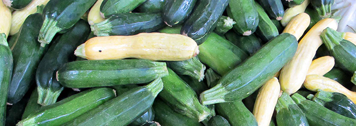 Summer Squash by Early Morning Farm CSA