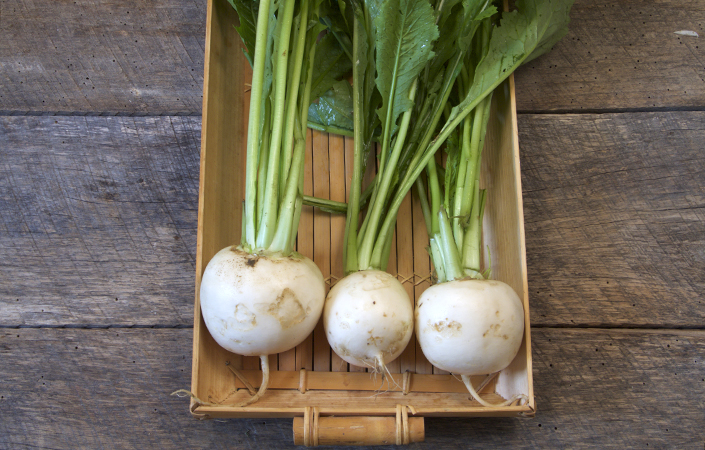 Easy Pickled Hakurei Turnips