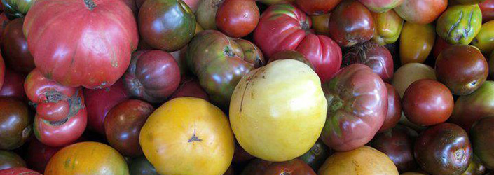 Heirloom Tomatoes in the CSA Share!