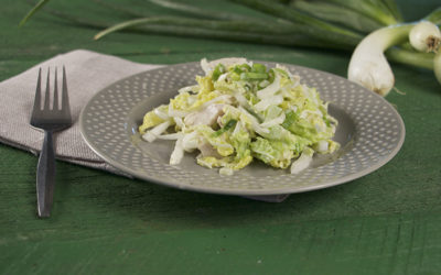 Napa Cabbage Chicken Salad