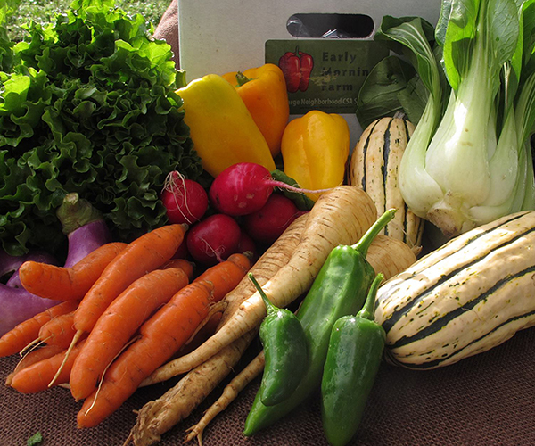 Lansing CSA Share Pick-up – People's Market