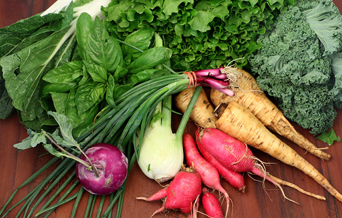 Vestal CSA Share Pick-up Location – Bountiful Harvest Coop