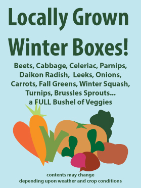 Winter CSA Boxes